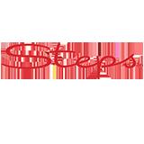 Logo Steps.nl
